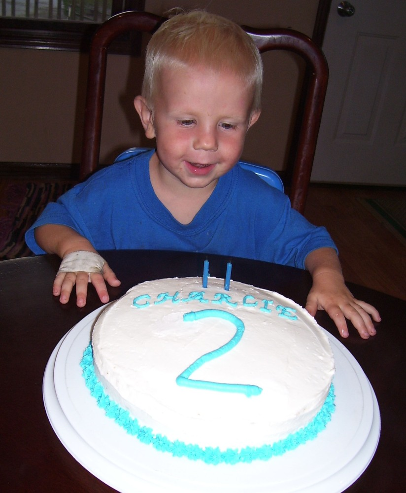 A Two-Year Old's Birthday (4/6)