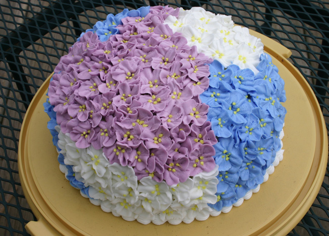 Cake Decorating Course Poole : Cake Decorating life with three boys and a splash of purple!
