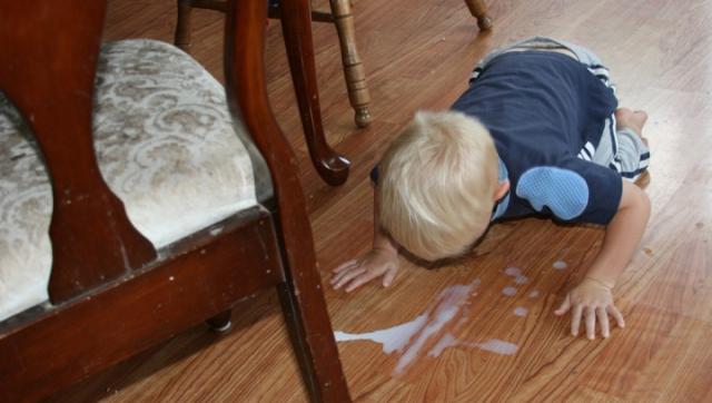henry-spilled-milk.jpg?w=640&h=362