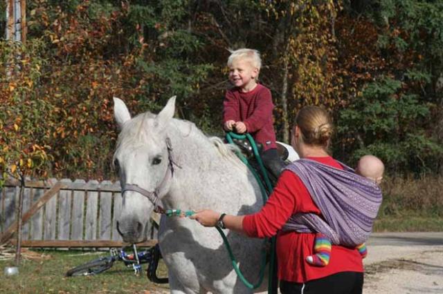 zara velvet wrap w horse (2)