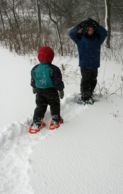 snow shoe path