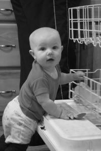 Dishwasher Nola Mae