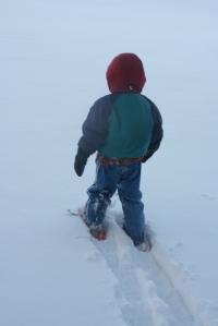 Dusk snow shoe 1