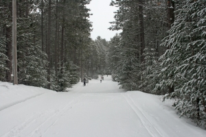 IWSC snowy trail