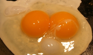 egg double yolk healthy