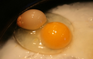 egg double yolk w shell