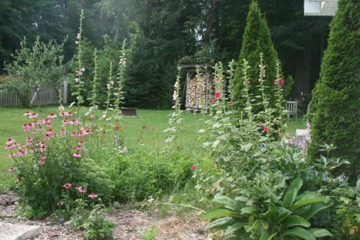 Front garden 2013