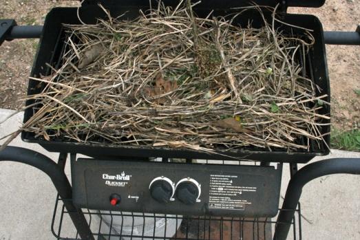 nest in grill