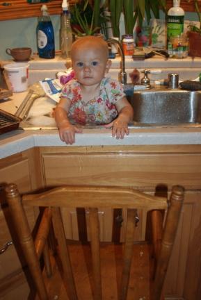 Nola Mae in sink