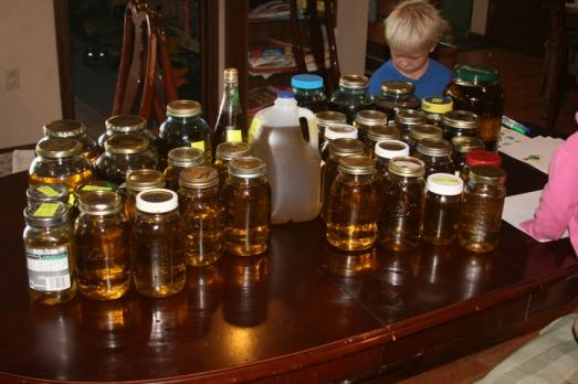Olive oil 2013