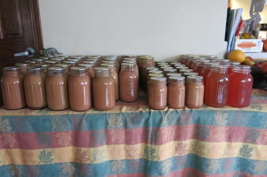 applesauce & juice 2013