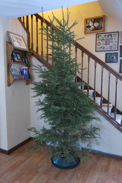 Christmas tree bare