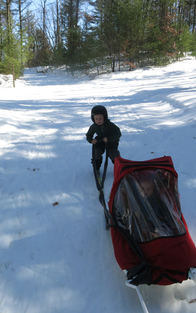 skiing spring