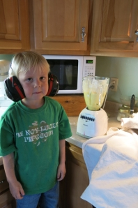 Henry hearing protection blender