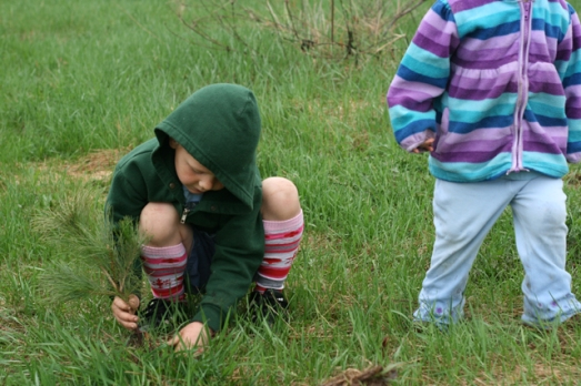 Jack's day planting trees
