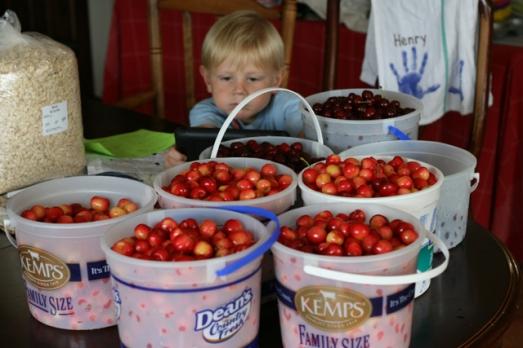 cherries 2014