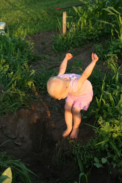 garden hole get ready