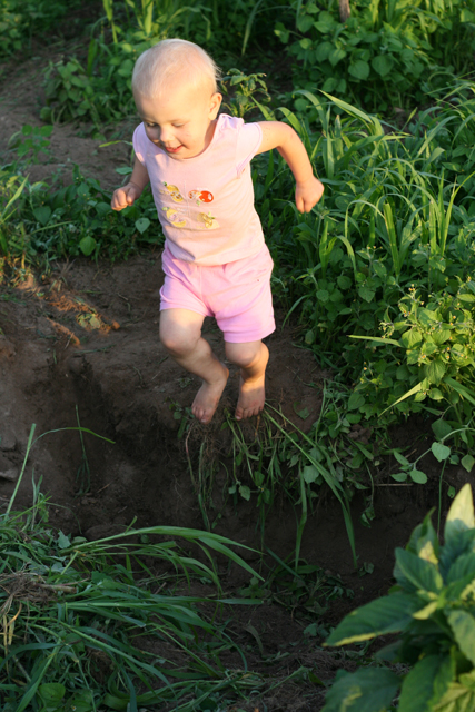 garden hole jump