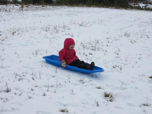 Nola Mae's sled