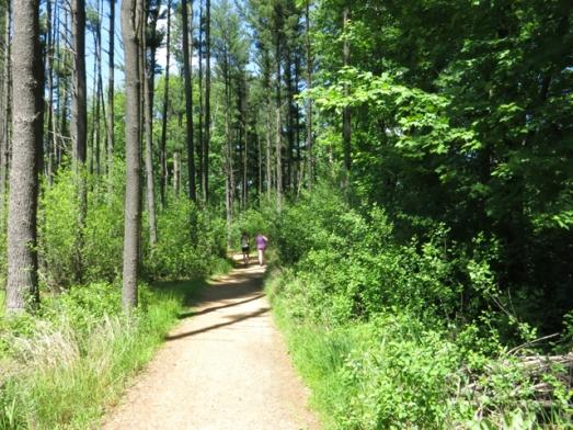 Frugal Sisters' Half Marathon 8 woods