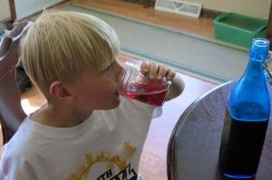 kombucha henry drinking